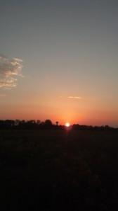 sunset 9 4